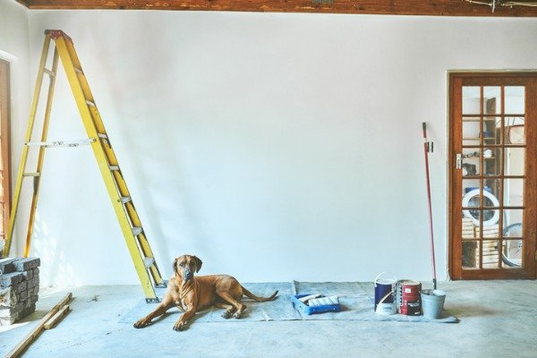 living and renovating